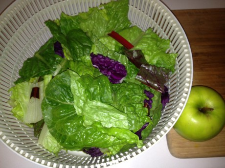 "Greens (cos lettuce, beetroot leaves, chard), red cabbage and an apple for the Gerson ""green juice"""